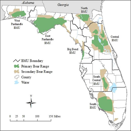 bear areas in florida