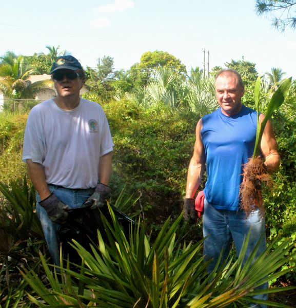 volunteers with invasive plant